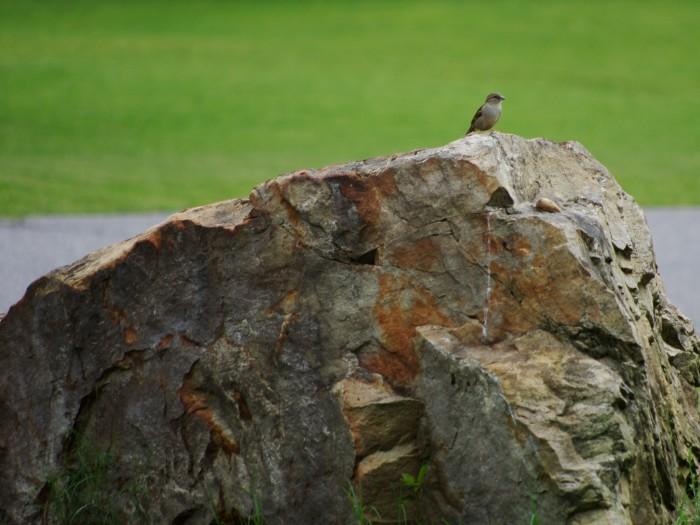 8. Batesville Rock