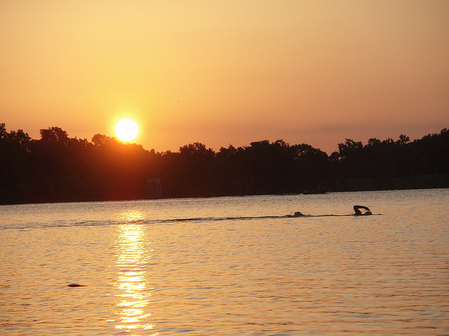 8. Beaverfork Lake: Conway's largest city park is located on the west end of this lake on Arkansas Highway 25.