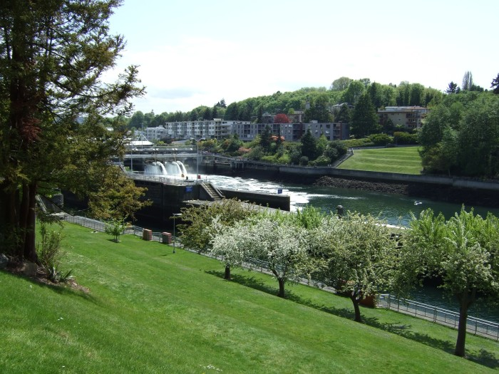 7. Your dearest one will be amazed by the picture-perfect view at the Chittenden Locks & Carl English Botanical Gardens in the Ballard neighborhood of Seattle!
