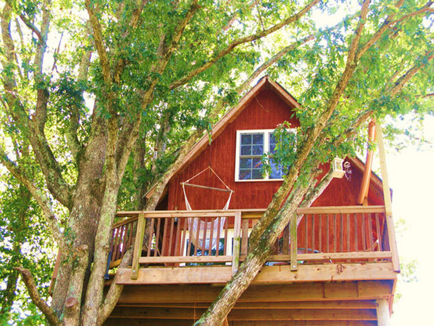 3. Papa's Dream Treehouse, Treehouse Vineyards