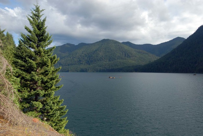 7. Lake Cushman - Olympic National Forest