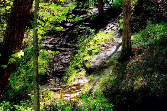 3) E.T. Mahoney Trails, Ashland