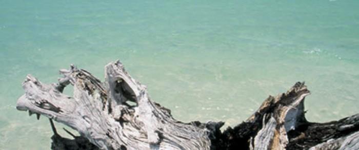 5. Gasparilla Island State Park