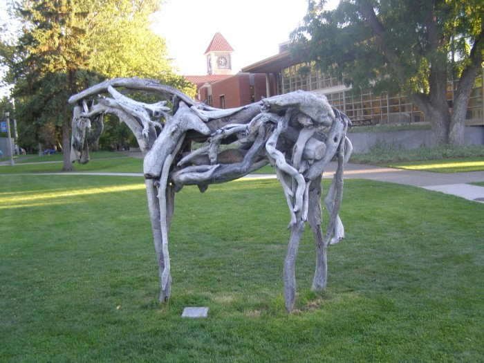 6. A horse made from driftwood, at Whitman College in Walla Walla.