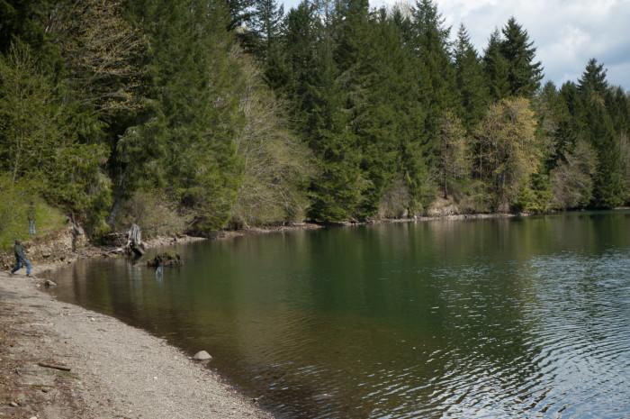 5. Ike Kinswa State Park - Silver Creek