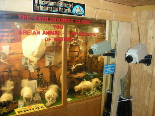1. Creation Museum, Taxidermy Hall of Fame, and Antique Tool Museum, Southern Pines
