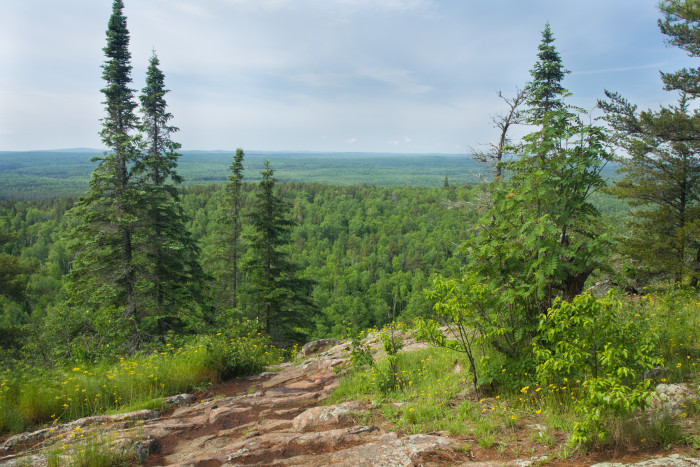 4 Eagle Mountain, the highest point in MN at a whopping... oh never mind just 2,301 feet is certainly worth the 7 mile round-trip.