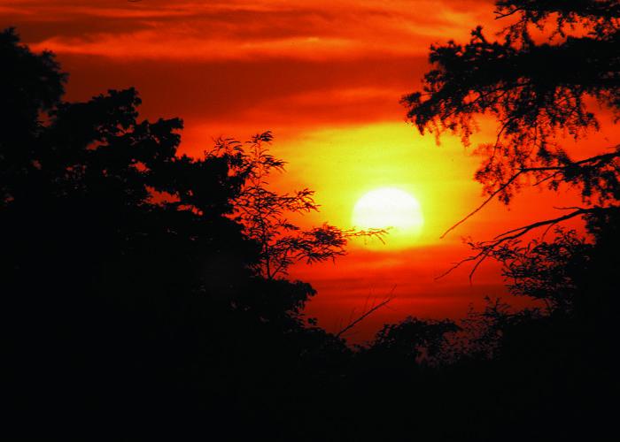 10. NCRS Sunrise Capture