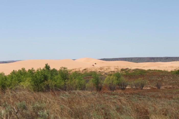 7. Little Sahara State Park