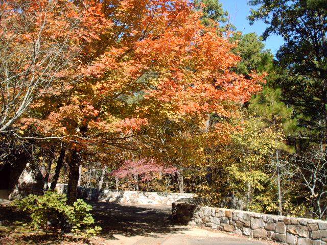 11. Talimena State Park