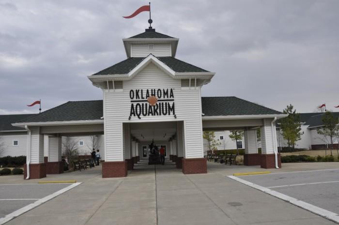 ok18-Oklahoma Aquarium