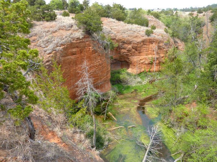 1.) Rough Horsetail Nature Trail- Red Rock Canyon State Park: Hinton, OK