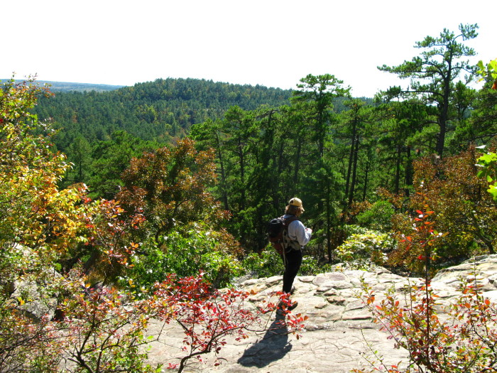 6.)  Canyon Trail- Robbers Cave State Park: Wilburton, OK