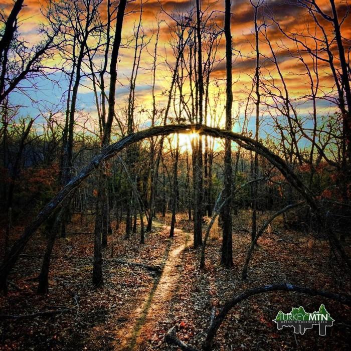 3.) Turkey Mountain Yellow Trail- Turkey Mountain Urban Wilderness-: Tulsa, OK