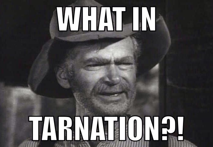 """14.) """"Tarnation""""- The polite way of saying, """"What in the hell?"""""""