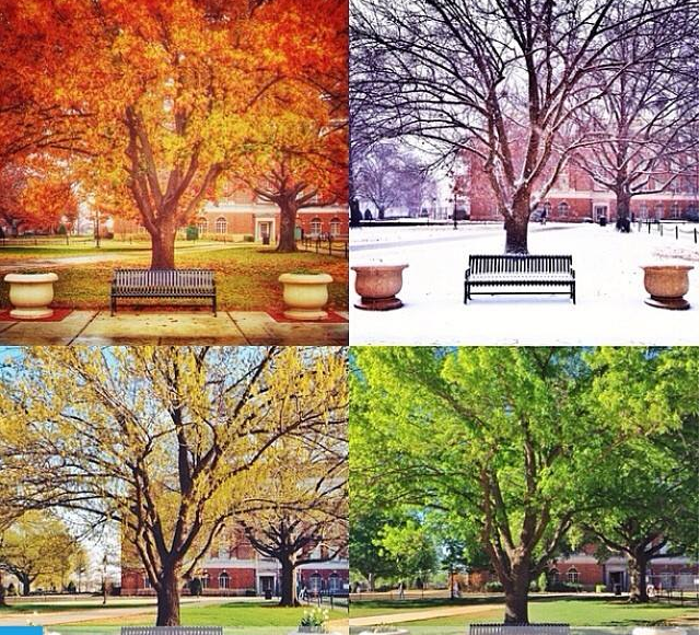 13.) Four Seasons- We get to experience it all...sometimes all in one day.