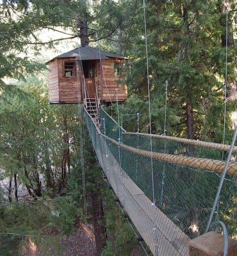 9) Scared of heights? You'll just have to leave that behind if you want to get from treehouse to treehouse, as the higher ones are connect by bridges like these.