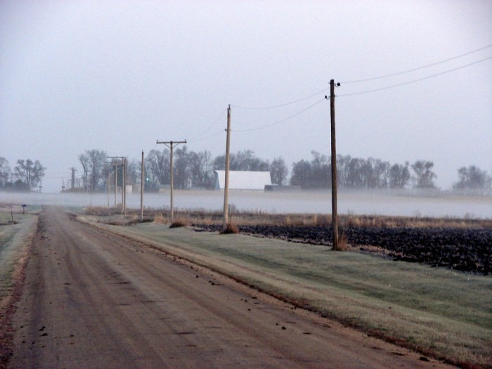 2. A common scene in the early morning on an Illinois country road