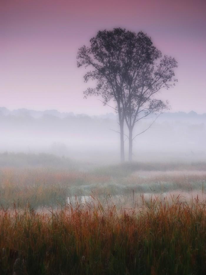 3. Truly awesome fog shot in Sleepy Hollow