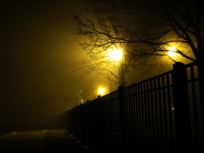 10. Great shot of a foggy park at night