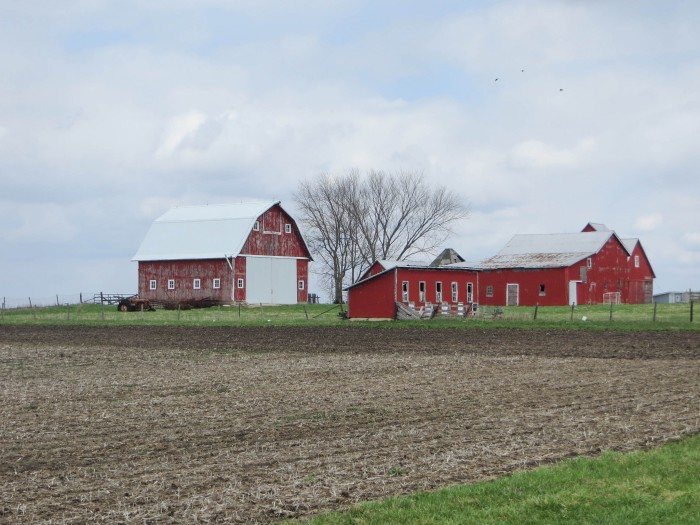 4. This old red barn is in Bureau County is a beauty