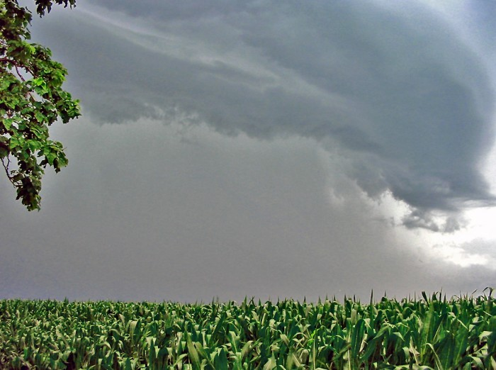 10. A storm quickly approaches this farm in McLean County