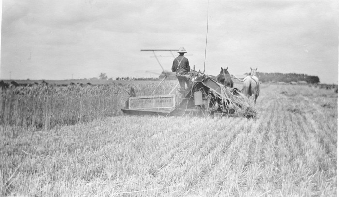 11. And here's how farming used to be done back in the day