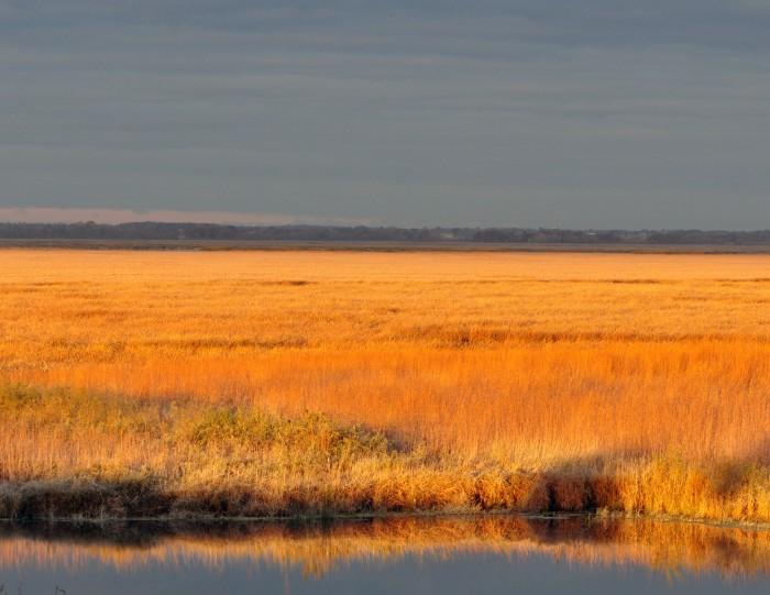 6. Horicon National Wildlife Refuge