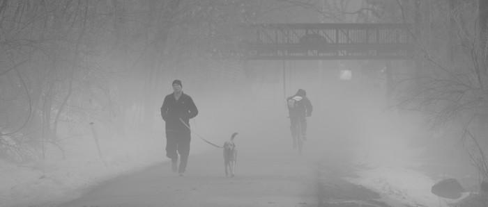 1. Love this shot of a man running his dog through Madison