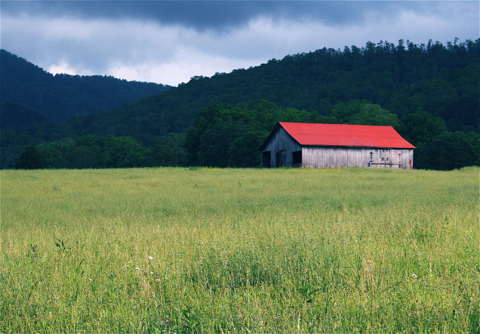 6) This stunning field and a red roof. All the heart eyes.