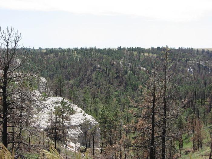 11) Pine Ridge National Recreation Area, Chadron