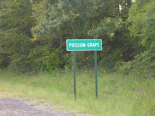 7. Possum Grape: This oddly named locale is in Jackson County, about five miles outside of Bradford.