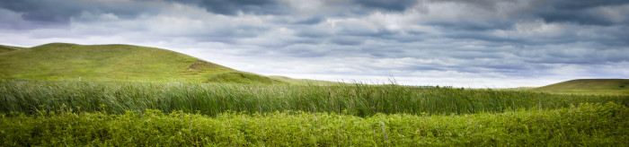 2 Scientific & Natural Area's like Prairie Couteau SNA in Southwestern MN are also a great place to wander free and take in the magnificent scenery.