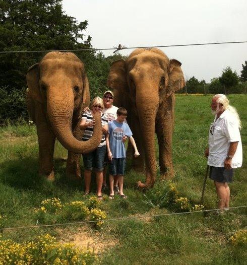 3. Elephant family time at Riddles Elephant Sanctuary