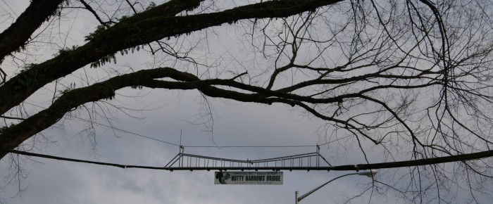 5. Nutty Narrows Bridge