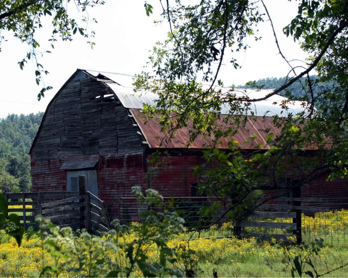 9. Summer Barn