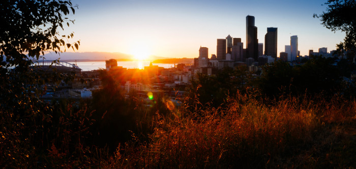This Seattle sunset is also pretty admirable - framed behind the bushes makes for an astounding outlook!