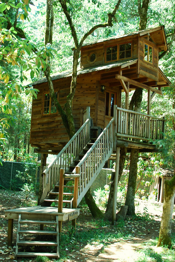 5) Here, the photographer wonders if this treehouse is the stuff of Robinson family dreams.