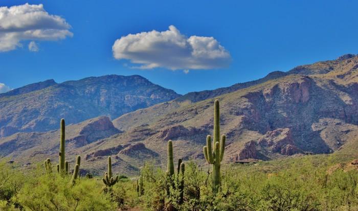 18. Tucson