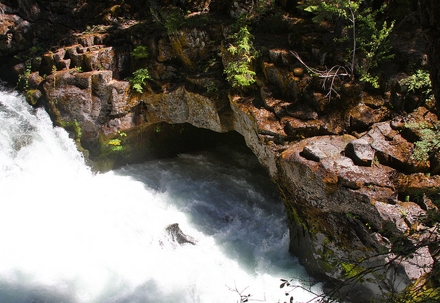 3) Upper Rogue River at Union Creek Trail