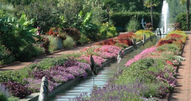 1. Visit a botanical garden.