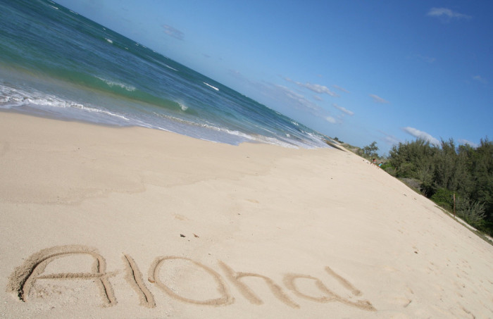 1) Aloha. While 'Aloha' means hello and goodbye, it also is the embodiment of the Hawaiian lifestyle and spirit, conveying feelings of love, kindness and anything good.