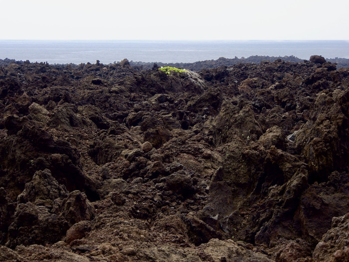 1) One of the world's largest volcanoes, Mauna Loa, located on the Big Island has been used for NASA training – astronauts would train for moon voyages by walking on lava fields.