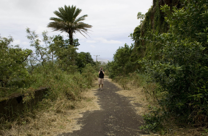 10) Once a prominent highway, the Old Pali Road has been left to nature for quite some time.