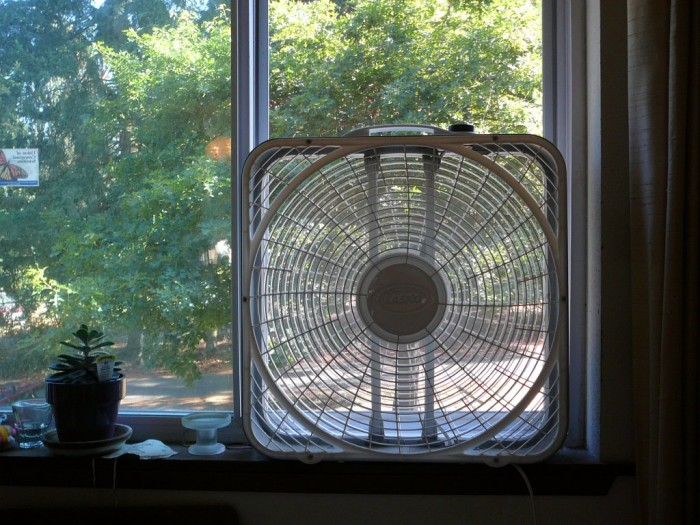 10. Just because the air conditioner isn't enough sometimes, most Mississippi homes have fans and lots of them.