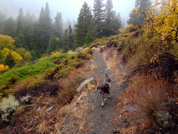 2. Sierra Canyon Trail