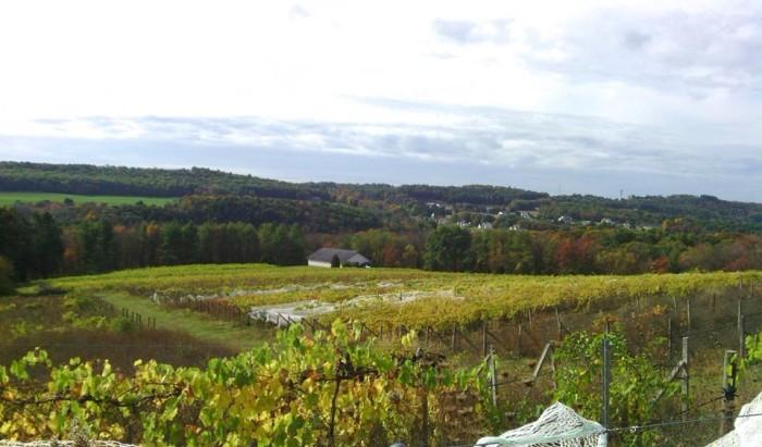 9. Pocono Wine Trail