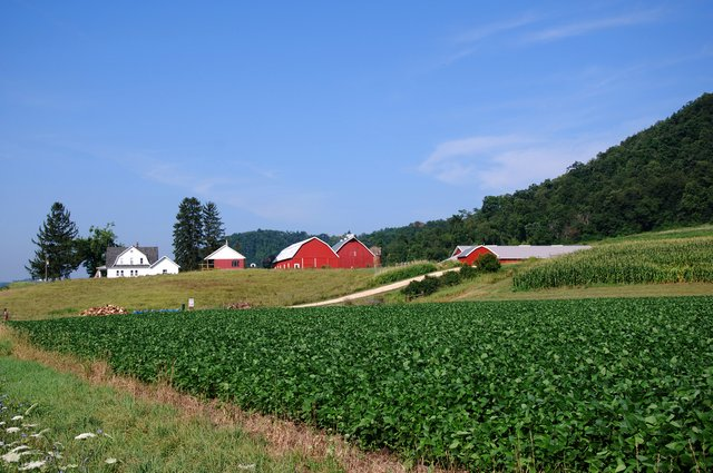 11. Picturesque doesn't even begin to describe this beautiful farm.