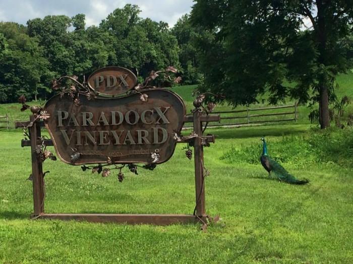 5. Brandywine Valley Wine Trail