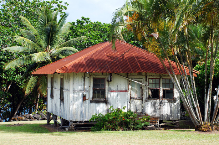 12) A plantation on Maui that looks rather neglected.